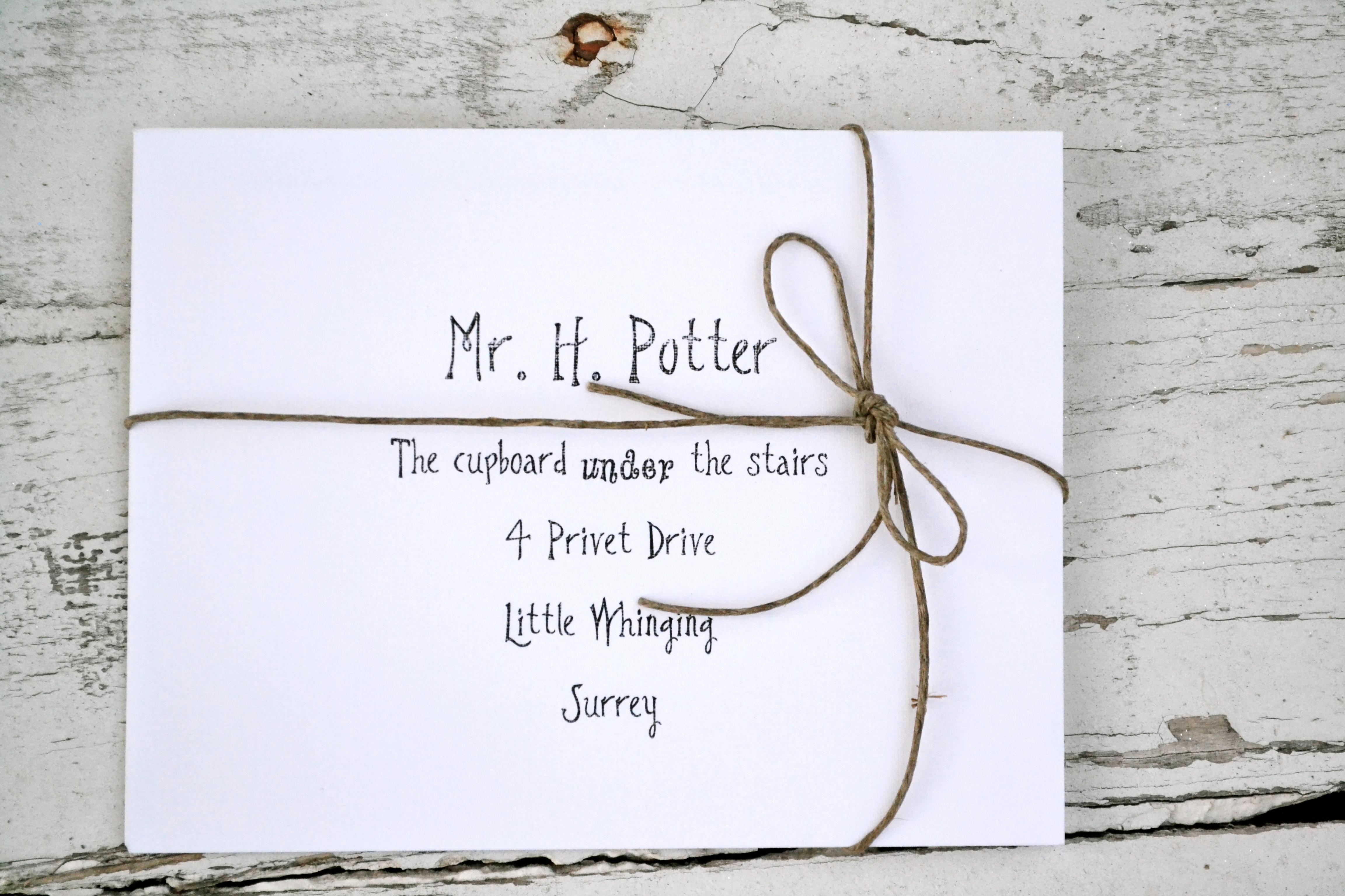 Harry Potter Mail Backdrop Everyday Party Magazine