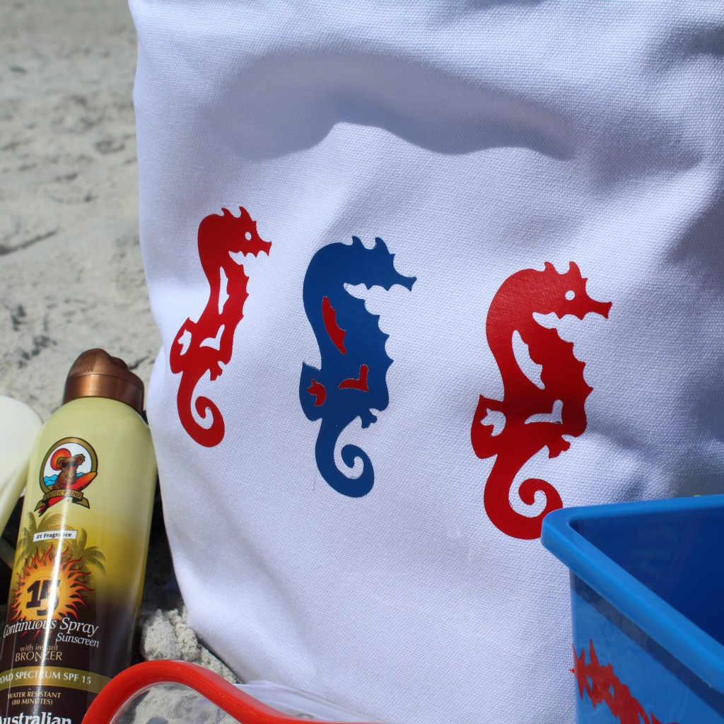 4th of July Beach Bag on Everyday Party Magazine
