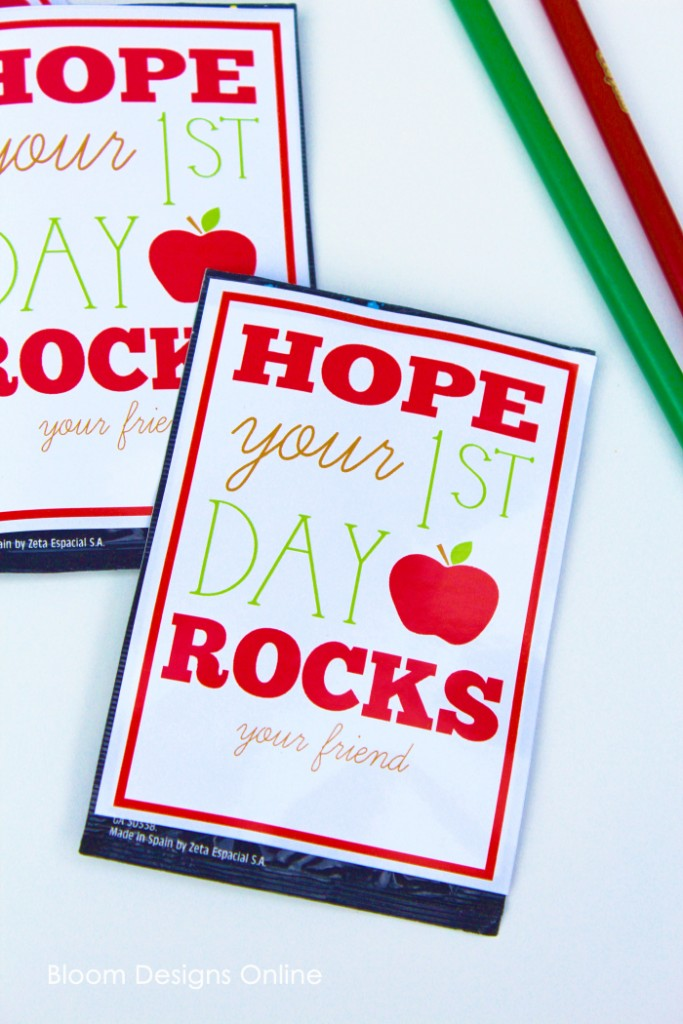 Bloom Designs Online School Year Rocks Tag