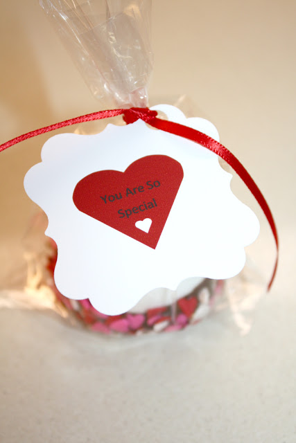 Valentine's Day Chocolate Dipped Marshmallow Recipe