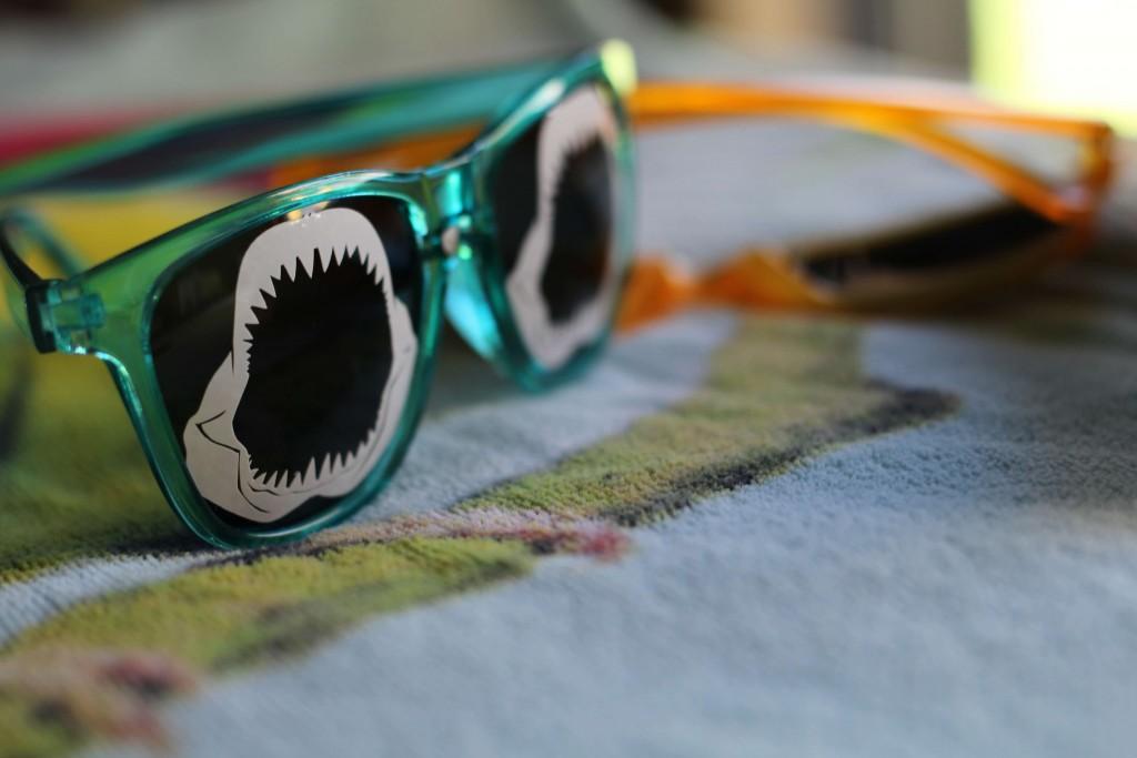 Shark Sunglasses DIY