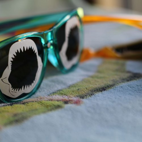 Everyday Party Magazine Shark Sunglasses DIY