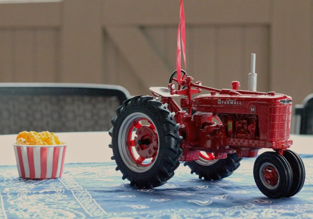 Farmall 1st Birthday Party