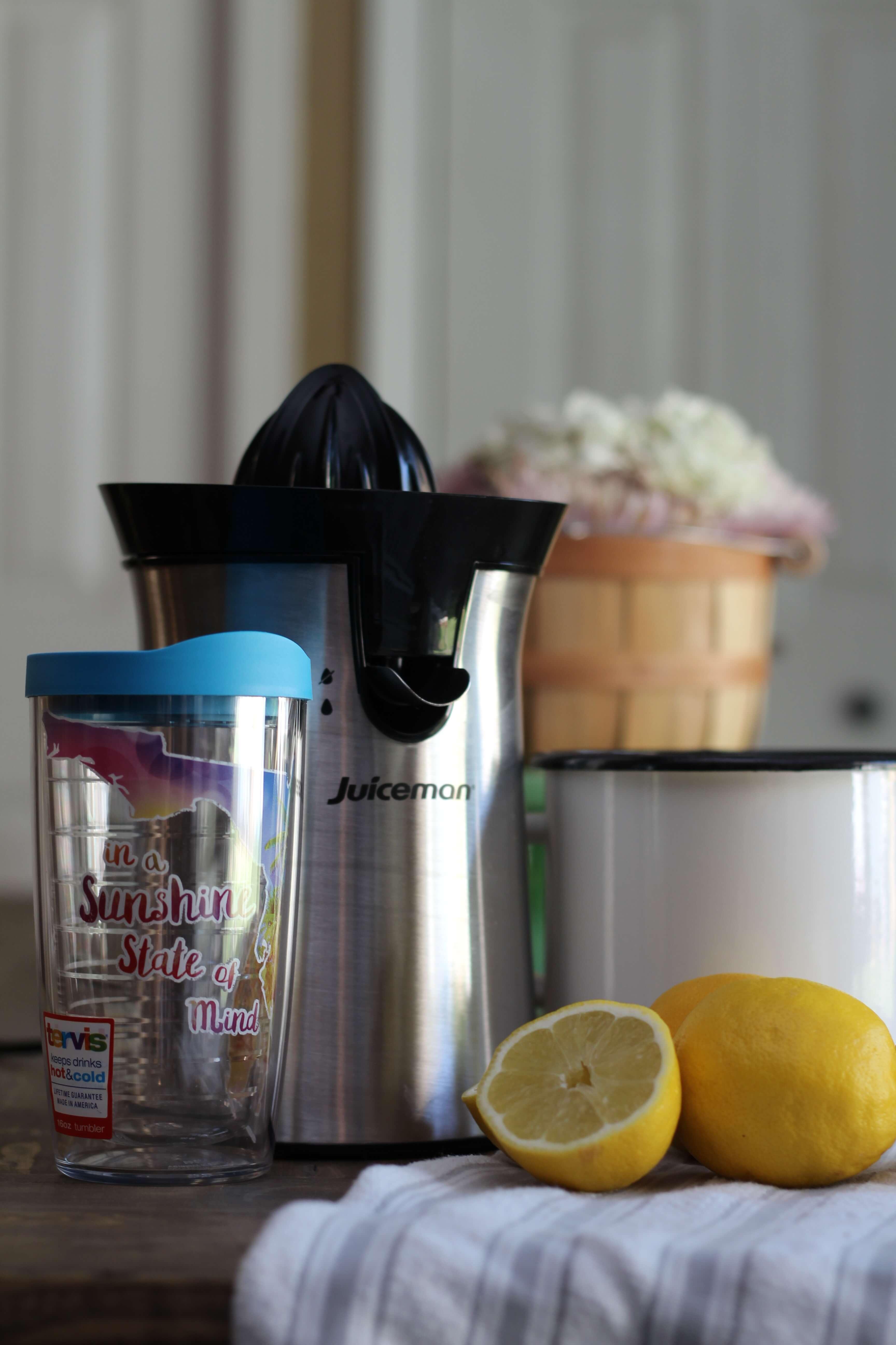 Everyday Party Magazine Lemonade Recipe
