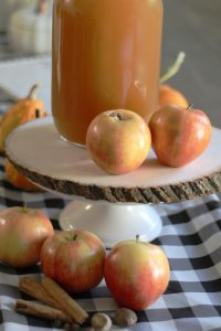 Everyday Party Magazine Apple Pie Moonshine Recipe
